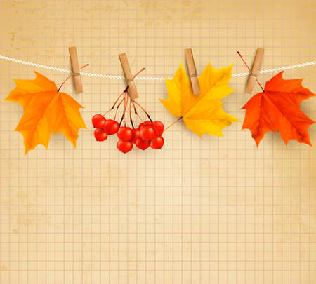 Autumn background with leaves  Vector illustration   Vector