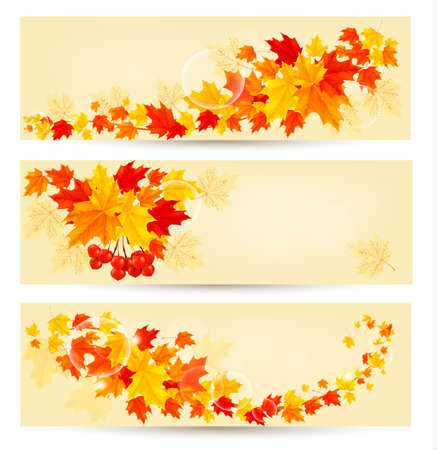Three autumn backgrounds with colorful leaves  Back to school  Vector illustration Stock Vector - 21643162