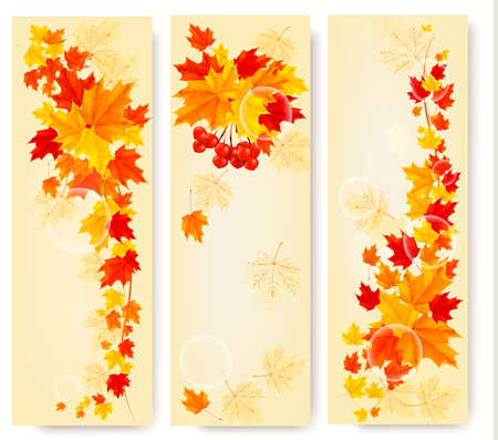 Three autumn backgrounds with colorful leaves. Back to school. Vector illustration  Stock Vector - 22178827