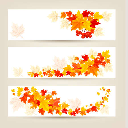 Three autumn banners with colorful leaves Vector  Stock Vector - 21913751