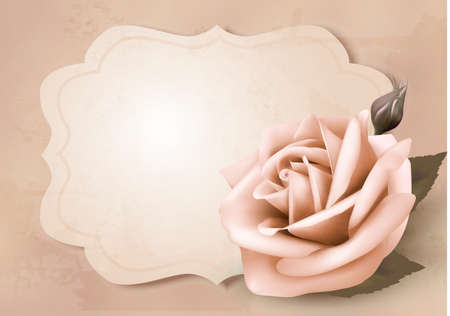 photoalbum: Retro greeting card with pink rose. Vector illustration.