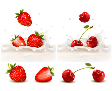 Red strawberry and cherries fruits falling into the milky splash. Vector illustration  Ilustracja