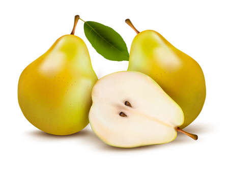 flavorful: Fresh pears isolated on white. Illustration