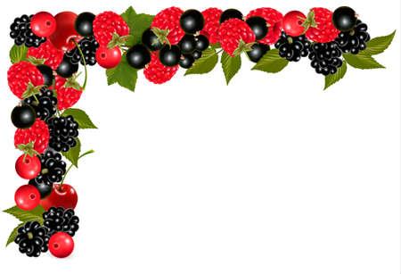Frame made of fresh juicy berries. Vector