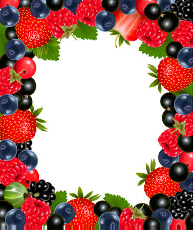 Background with fresh berries and cherries. Vector illustration Vector