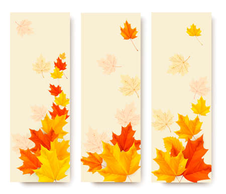 Three autumn banners with colorful leaves. Vector illustration.  Vector