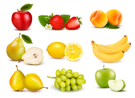 Big group of different fruit. Vector.  Vector