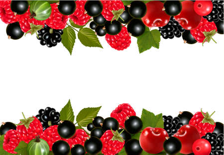 raw food: Background with fresh berries and cherries. Vector illustration  Illustration