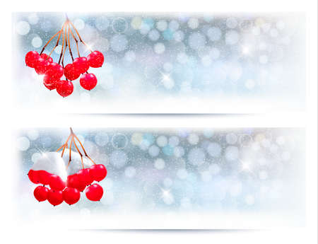 desember: Holiday banners with Christmas branch with red berries. Vector illustration.