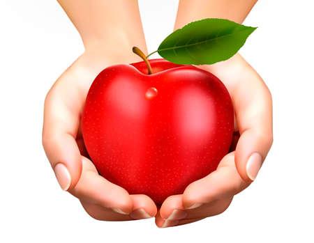 manzana: ed manzana madura en una mano. Concepto de dieta. Vectorial.