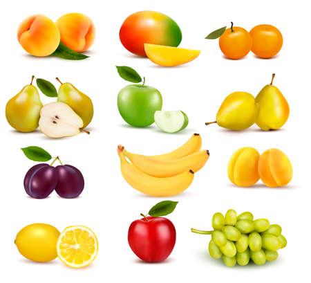 mango slice: Big group of different fruit. Vector.