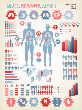 anatomy body: Medical infographics elements. Human body with internal organs. Vector.  Illustration