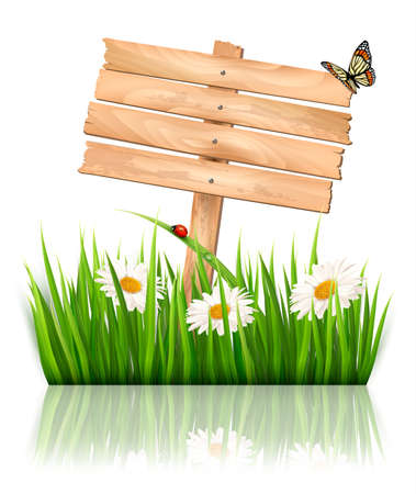Nature background with green grass and flowers and wooden sign Vector.  Vector