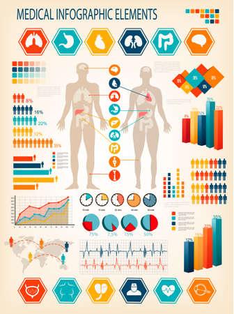 Infografía médica elementos. Cuerpo humano con los órganos internos. Vector.