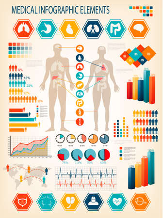 body: Medical infographics elements. Human body with internal organs. Vector.  Illustration