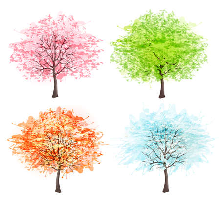 winter cherry: Four seasons - spring, summer, autumn, winter. Art tree beautiful for your design. Vector illustration. Illustration