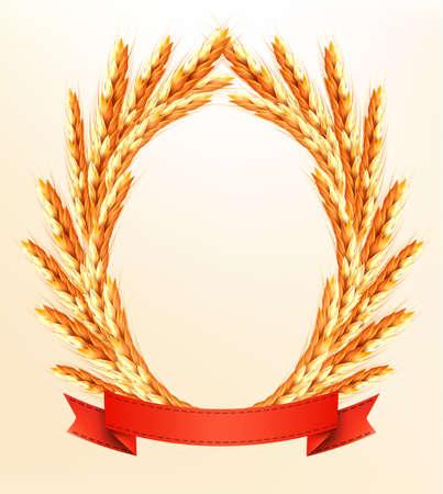 thresh: Espigas de trigo maduro de color amarillo con cintas rojas. Vector de fondo