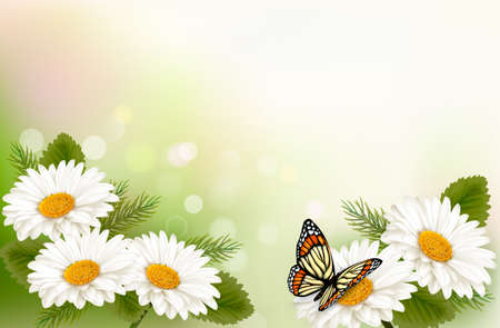 Summer background with yellow beautiful flowers and butterfly. Vector illustration