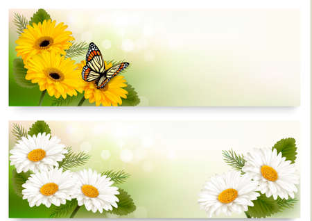 white daisy: Summer banners with colorful flowers and butterfly. Vector. Illustration