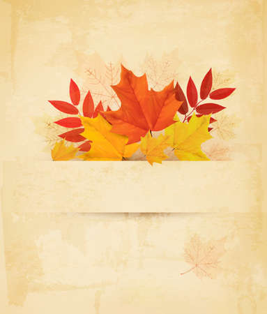 Autumn background with leaves. Vector.  Vector