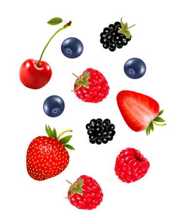Set of juicy berries. Vector.   イラスト・ベクター素材