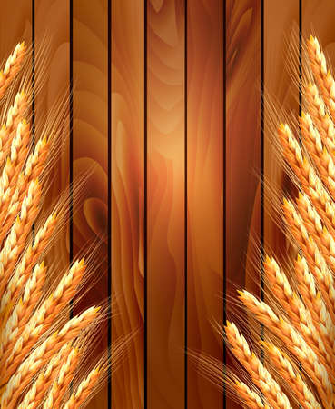 hay: Ears of wheat on wooden background. Vector illustration