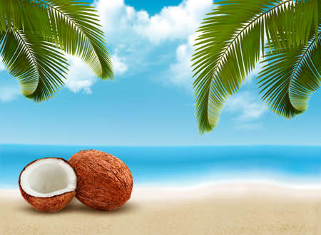 coconut drink: Coconut with palm leaves. Summer vacation background. Vector.