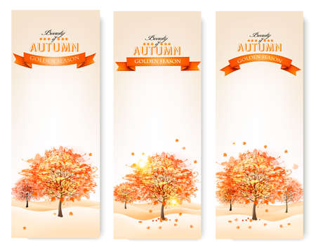 orange trees: Autumn background with colorful leaves and trees.Vector illustration.