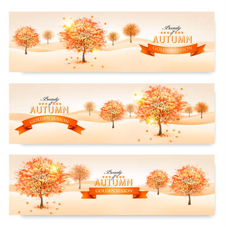 Autumn background with colorful leaves and trees.Vector illustration.  Vector