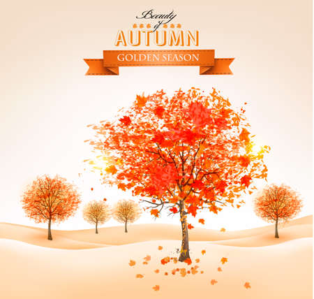Autumn background with colorful leaves and trees. Vector illustration.