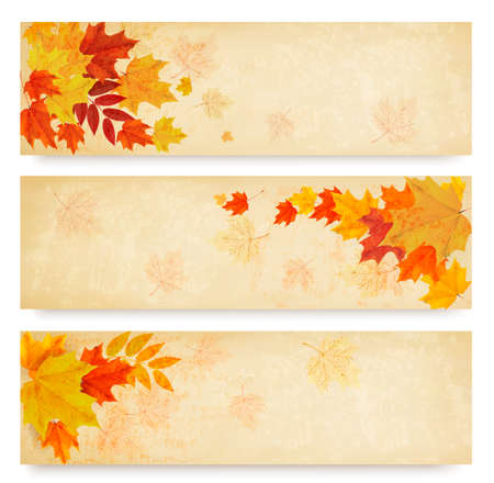 Three abstract autumn banners with color leaves. Vector  Vector