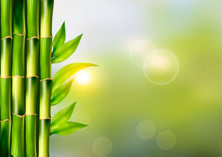 Spa background with bamboo.Vector Illustration