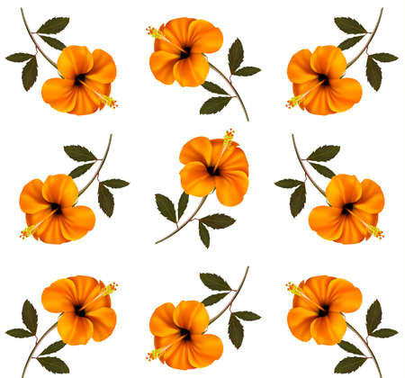 Pattern of beautiful yellow flowers.  Vector