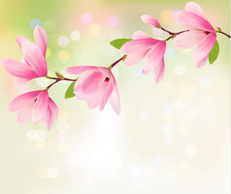 Spring background with blossom brunch of pink flowers. Vector Vector
