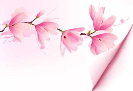 Primavera sfondo con fiore il brunch di fiori rosa. Vettore