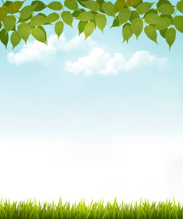 Nature background with leaves and grass. Vector. Иллюстрация