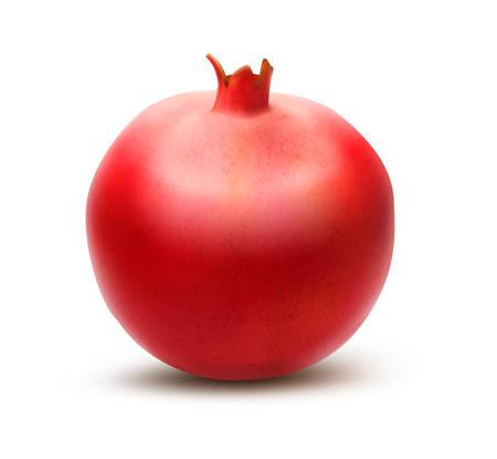 sepal: Juicy pomegranate. Vector Illustration