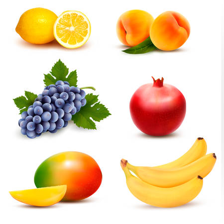 mango fruta: Gran grupo de diferentes frutas. Vector.