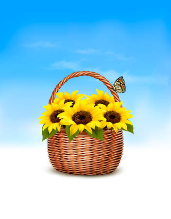 picnic basket: Spring background. Basket full of sunflowers and a butterfly. Vector.