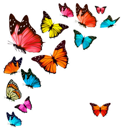 pink and green: Background with colorful butterflies. Vector. Illustration