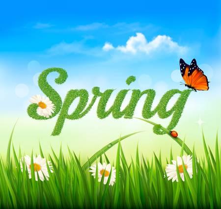prato e cielo: Primavera sfondo con erba, cielo e una farfalla. Vector. Vettoriali