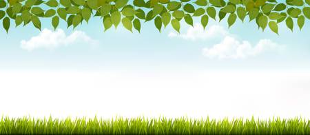 white fence: Long white fence banner with grass and leaves. Vector.