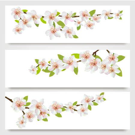 april beautiful: Three sakura branches banners. Vector.