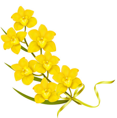 yellow orchid: Holiday yellow flowers background. Vector.