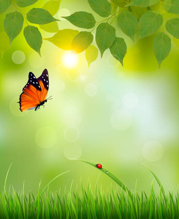 buterfly: Nature summer background with leaves and grass. Vector.