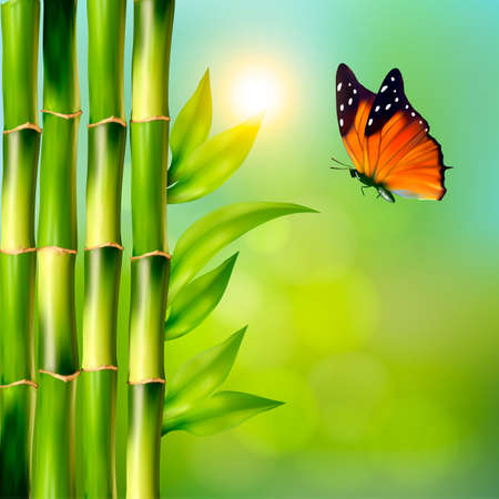 bamboo border: Spa background with bamboo and butterfly.Vector