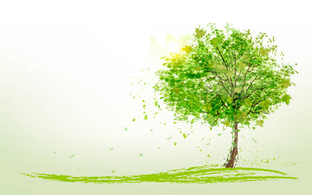 summer trees: Summer background with green trees. Vector.