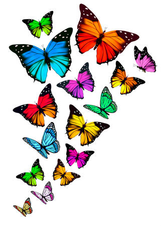 Background with colorful butterflies. Vector. Ilustração
