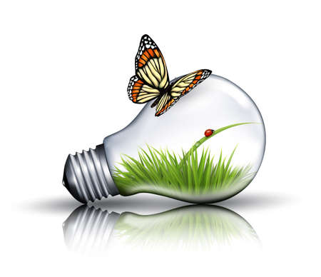 bulb: Eco light bulb with grass, a ladybug and a butterfly. Vector.