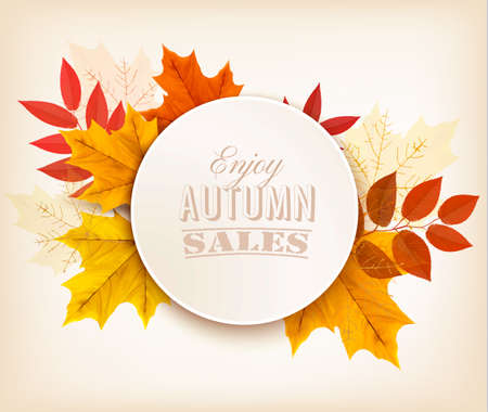 fall foliage: Autumn Sales Banner With Colorful Leaves. Vector.